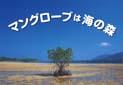 「自然科学紙芝居 マングローブは海の森」